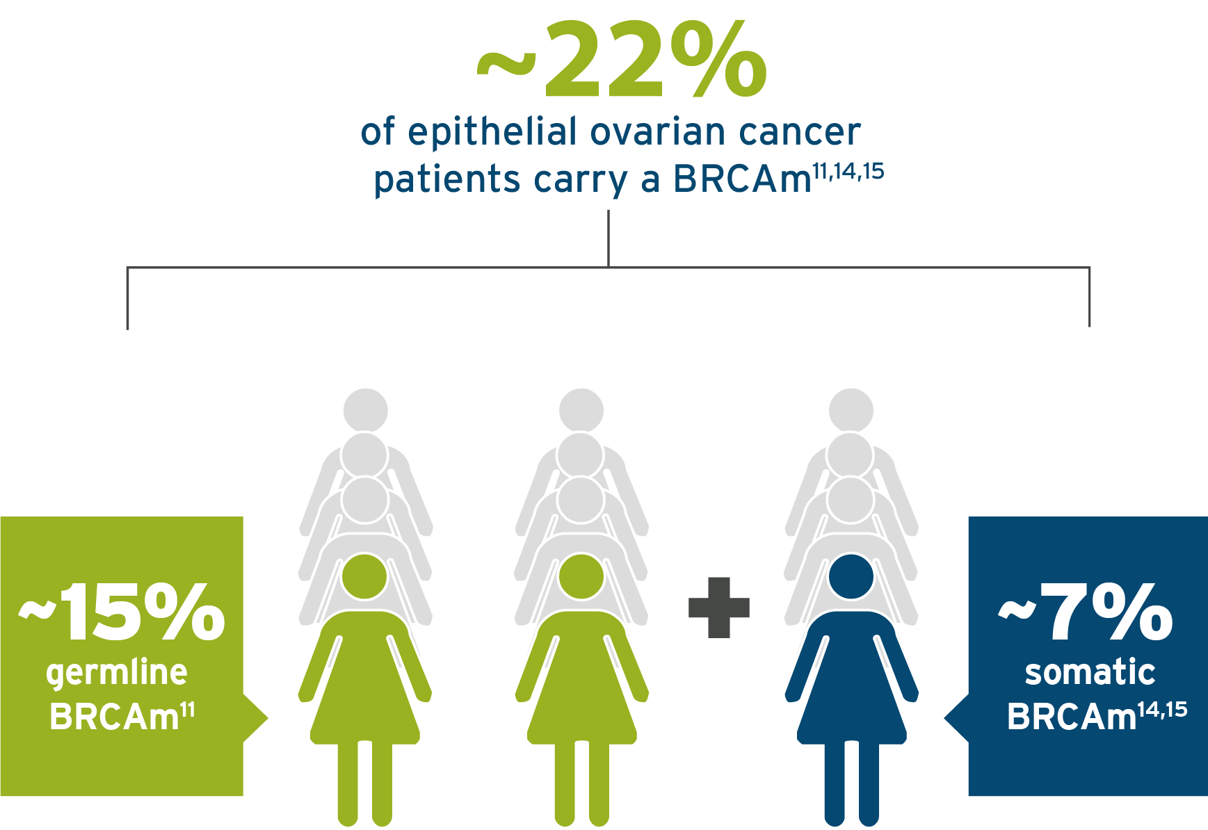 22% of epithelial ovarian cancer patients carry a BRCAm  image